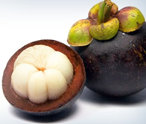 Raw Opened Garcinia Fruit